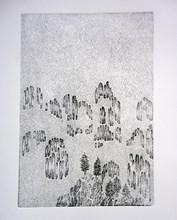 Etching,17x24,2013