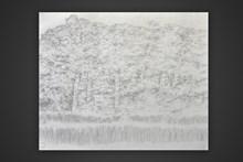 Σχέδιο με μολύβι,50x70,2015