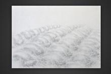 Σχέδιο με μολύβι,50x70,2014.Το έργο ανήκει στη συλλογή του Τελλογλείου Ιδρύματος Τεχνών ΑΠΘ